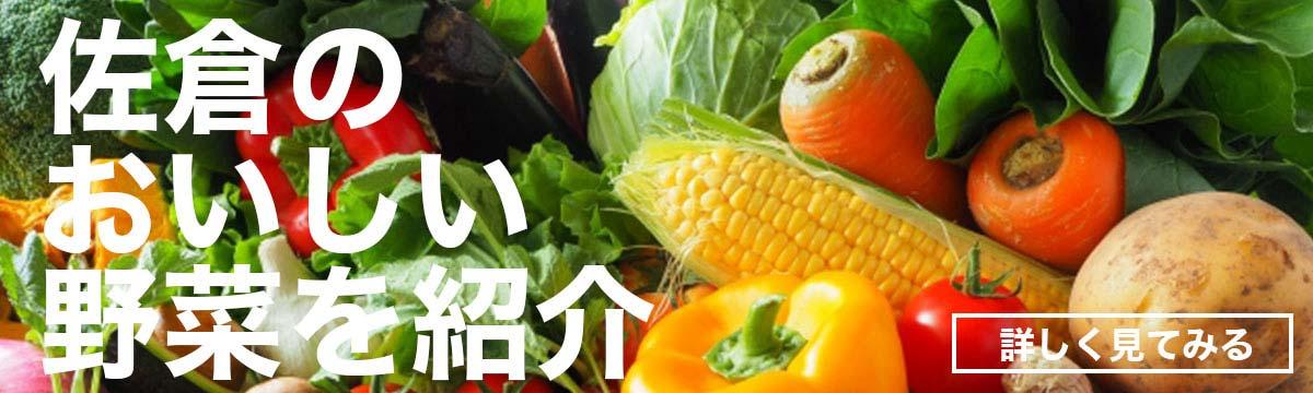佐倉市のおいしい野菜を紹介